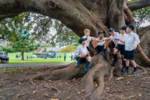 St Marys Cathedral Catholic College Sydney students talking under a tree